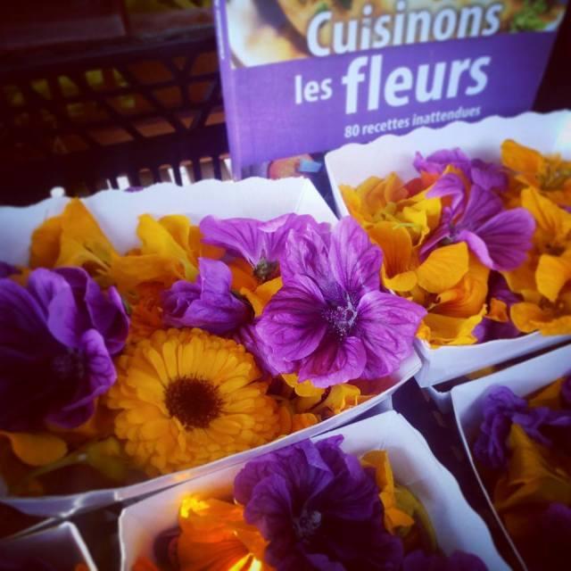 Fleurs comestibles