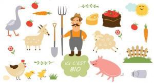 agriculteurs_francais_conversion_massivement_au_bio