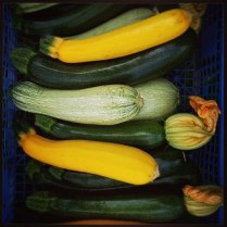 courgettes-multi