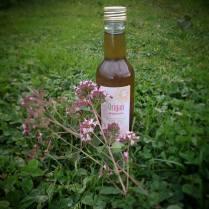 Sirop d'origan (marjolaine sauvage) : un bon goût de plante pour une tisane, un yaourt, une salade de fruits...