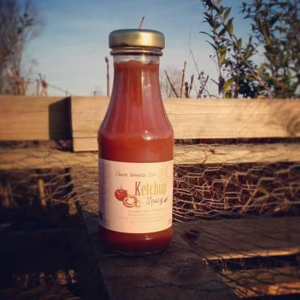Ketchup maison : Une bonne façon de continuer à profiter des tomates de la Tournichette pendant l'hiver !