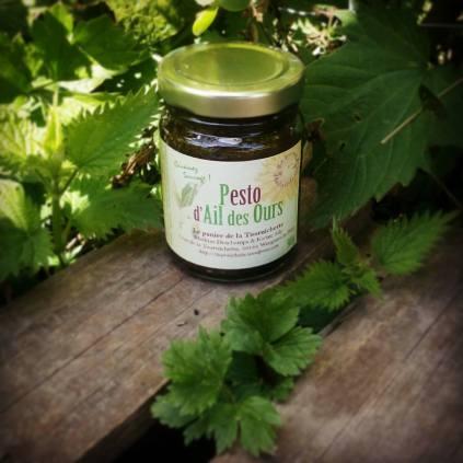 Pesto d'ail des ours : la force de l'ours alliée à la richesse de l'huile d'olive !