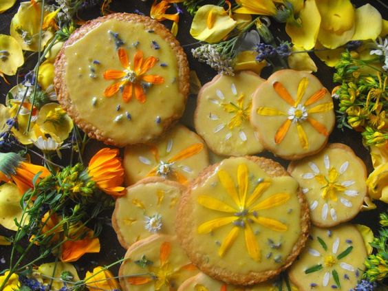 Solstice cookies